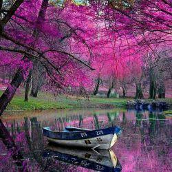دریا باش که اگر کسی سنگ به سویت پرتاب کرد سنگ غرق شود نه آنکه تو متلاطم شوی...!!!
