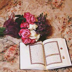 میلاد پیامبر نورحضرت محمدمصطفی(ص)رابه تمامی دوستان تبریک میگم