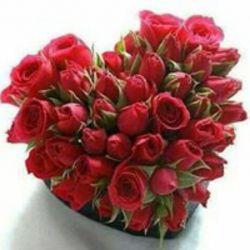 fb: taher akbari emile: taher.akbari56@yahoo.com اگه دوستان (خاص)پیام داشتن در خدمتم