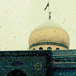 عمه جان زینب سلام الله علیها....  گنبدت از بارش برف مکرر شد سپید  مثل گیسویت که در هجر برادر شدسپید