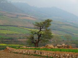 طبیعت زیبای استان گلستان - نوده خاندوز