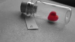 فکری نیست..شعری نیست..یاخته هایم همه بی رنگ شده اند. کلمات گم شده اند, فکرها دور شده اند, در نسیم حل شده اند...