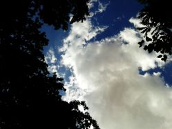 آسمون ►Shakil◄
