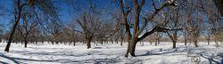 زمستان امسال گوغر 93