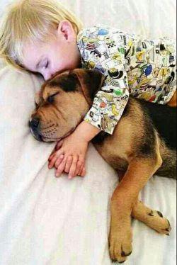 سلام...شب بخیر دوستان...
