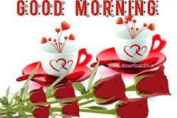 سلام صبحتون بخیر دوستان عزیز....