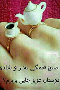 سلام و صد سلام به دوستان گلم...صبحتون بخیرو شادی....