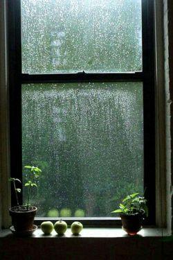 هیچوقت نمیگم جاتون خالیه ''''چون جاتون همیشه تودلم سبزه وبجاتون پشت پنجره سیب گذاشتم تا باهم بببنیم بارس رحمت الهی '''دوستتون دارم در حدی که نمیتونید تصورشم بکنید !!!شما چطور پشت پنجره دلتون جایی برای من هست ??????