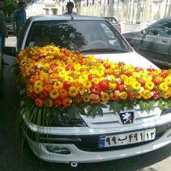 ماشین عروس فلفلی