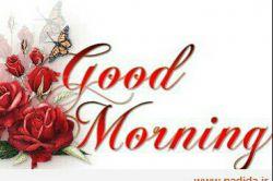 صبح اتفاق قشنگی است ، بیخودی نیست که گنجشکها شلوغش می کنند ، پس صدا بزن خدا را که امروز روز توست ، به شرط لبخندت، بخند تو در آغوش خدایی ، صبحتون زیبا.. صبحتون باصفا صبحتون به رنگ خدا زندگیتون به رنگ خدا...
