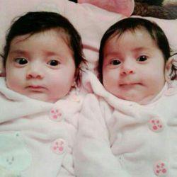 دختران دو قلوی شهید مصطفی صالح از مدافعان لبنانی حرم حضرت زینب سلام الله علیها(زینب وحوراء)