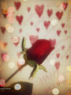 روز ولنتاین مبارک! photo by: Naser
