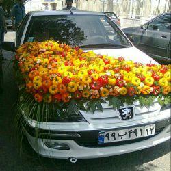 ماشین عروس باطعم فلفل دلمه ای!!!به به