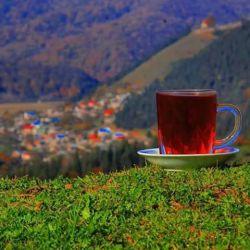 من مانده ام و یک فنجان چای در دستم/یک فنجان چای هم روی میز / درست روبروی صندلی خـــــــالی تــــــــــــــو!...