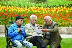 همه #بازنشسته ها مشهدی میشن! #مدیر_عامل #سازمان #تامین_اجتماعی از برنامهریزی برای اعزام تمام #بازنشستگان #کشور طی ۵ سال به سفر زیارتی #مشهد خبر داد