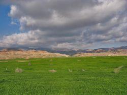 طبیعت بهاری گلان ایلام-عکاس...زیبا