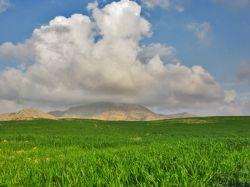 طبیعت بهاری سرنی ایلام -عکاس....زیبا
