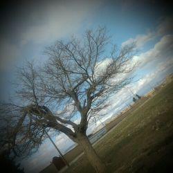 به امید بهار