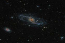 کهکشان مارپیچی ' در صورت فلکی دب اکبر
