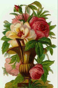 سلام این گل را به مناسبت میلاد خانم زهرا (س) و روز مادر تقدیم می کنم به مادران  دوستان خوب لنزرو ... مبارک باد