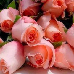 تقدیم به خانم های گل لنزور روزتون مبارک.