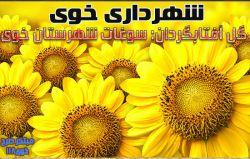 مزارع آفتابگردان.میراث شهرستان خوی مبتکر طرح: خوی118 http://www.khoy118.ir/