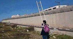 دختربچه فلسطینی هر صبح برای رفتن به مدرسه، نردبانی بر پشت خود حمل میکند تا از دیوار حائل در سرزمینهای اشغالی فلسطین رد شود و به مدرسه برود.