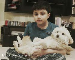 دوستی با حیوانات