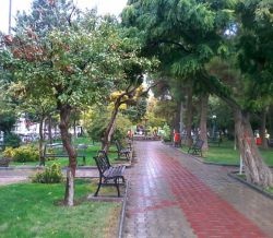 ملایر(پارک چمران)