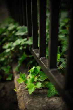 دلم تغییر می خواهد ......... دلم تنها، فقط...یک ذره ای، تغییر می خواهد.........!!  اگر اندک، اگر بسیار،  فقط تنها، دلم تغییر میخواهد.....