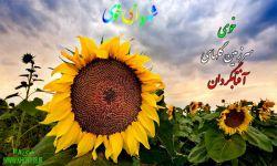 آفتابگردان خوی مبتکرطرح:خوی118 http://www.khoy118.ir/