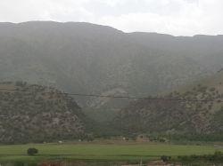 جنگل های زیبای بلوط خرم آباد- لرستان