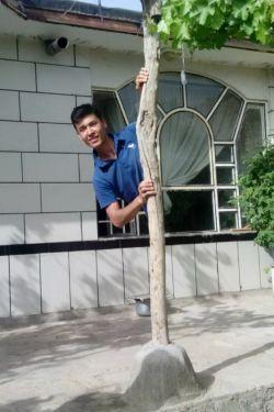 امروز قایم موشکا بازی میگردیم من پشت این ستون چوبی قایم شده بودم تا سرک کشیدم ببینم چخبره ازم عکس انداختن ^_^
