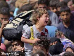 گناه این کودک چیست ؟این کودک توسط عناصر داعش اواره شده