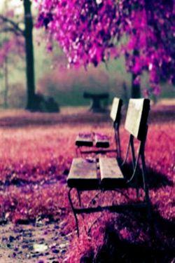این روزا شبها خیلی دلم میگیره چراشو نمدونم ....دلم گرفته ای رفیق ... .