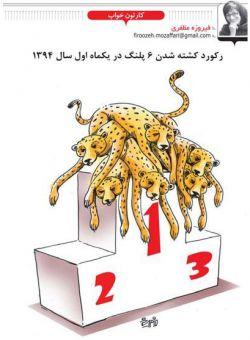 """شش """"پلنگ ایرانی"""" در چهل و چهار روز گذشته کشته شدهاند. #میهنبلاگ #persiancheetah #پلنگایرانی http://behshahrparkmeli.mihanblog.com/post/470"""