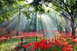 به نام خدائی که هستی را با مرگ ، دوستی را یک رنگ زندگی را با رنگ ، عشق را رنگارنگ ، رنگین کمان را هفت رنگ شاپرک را صد رنگ ، و مرا دلتنگ تو آفرید .