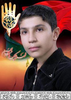 کربلایی محمدرضا وطنخواه من کربلا رو دوست دارم....