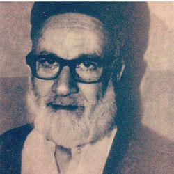عارف کامل ، حضرت سید هاشم موسوی حداد