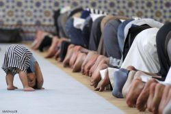 عکس جالب نماز خواندن کودک
