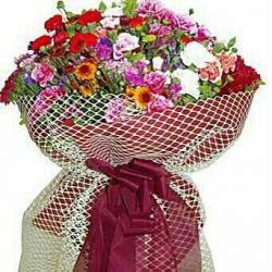 @majidqwe3  آقا مجید تولدت مبارک