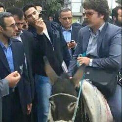 اعتراض دانشجوی گیلانی به گران شدن بنزین با سوار شدن رو الاغ و ورود به دانشگاه!