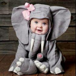 فیل کوچولو :)