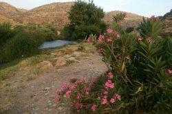روستای گلین بهشتی در گیلانغرب ششم خرداد  ثبت عکس باموبایل