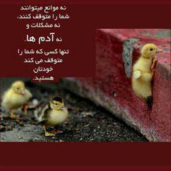 سلام به دوستای گلم