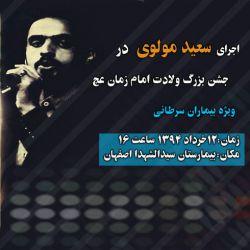 کنسرت سعید مولوی :