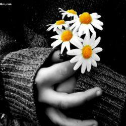 خاطراتت صف کشیده اند! یکی پس از دیگری, حتی بعضی هاشان آنقدر عجولند که صف را بهم زده اند! ومن...فرارمیکنم..از فکر کردن به تو..مثل رد کردن آهنگی که...خیلی دوستش دارم خیلی...!!!