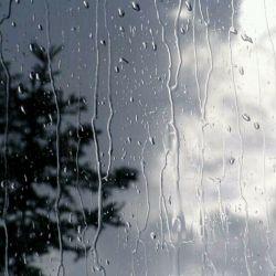 دلتنگی یعنی خلوت تنهاییت از آسمون پاییزی ابری تر باشه!