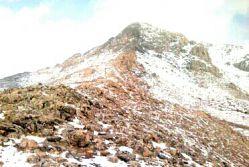ارتفاعات شاهو