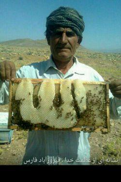 این عسل خوردن داره ....